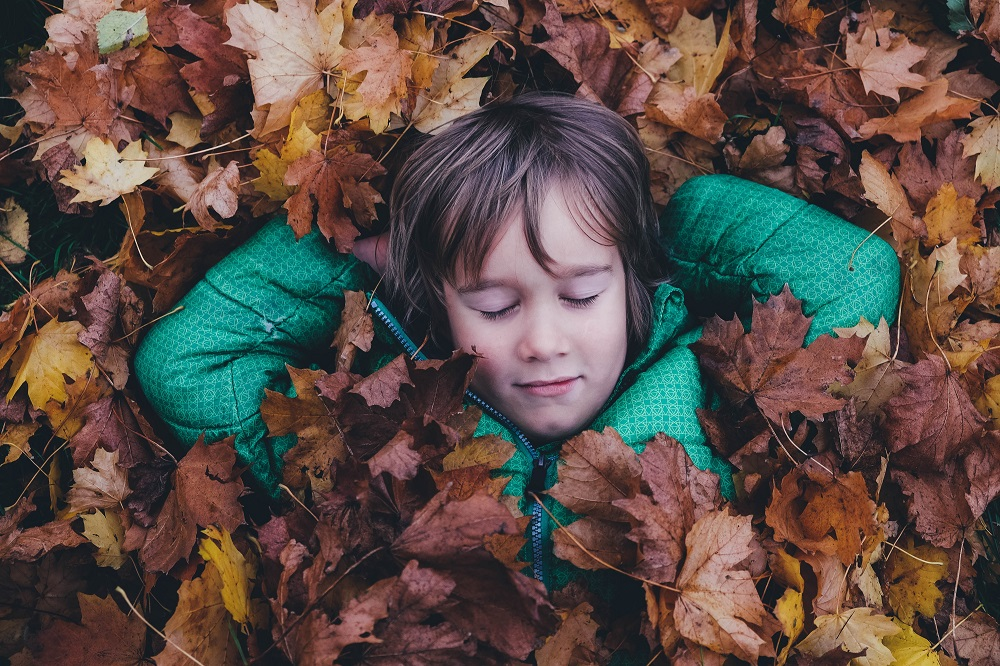 young boy rests in a pile of leaves in his yard